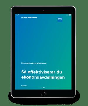 F_19_217_Enfo_E-bok_Digital_Finance_Dept